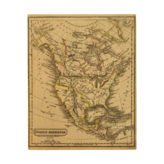 North America 40 Wood Wall Art