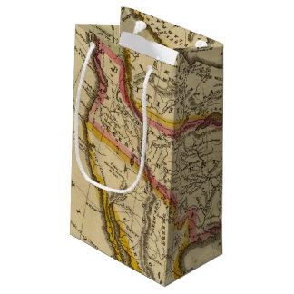 North America 42 Small Gift Bag