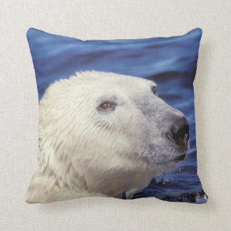 North America, Arctic Circle. Polar bear Throw Pillow