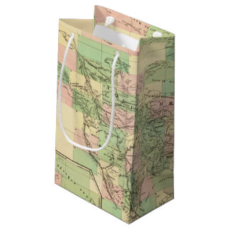 North America Assembly Map Small Gift Bag