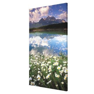 North America, Canada, Alberta, Banff National 2 Canvas Prints