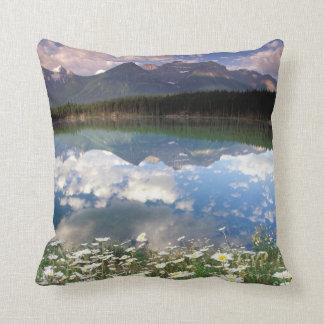 North America, Canada, Alberta, Banff National 2 Cushion