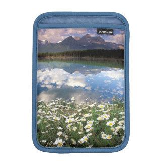 North America, Canada, Alberta, Banff National 2 iPad Mini Sleeve