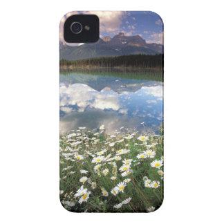 North America, Canada, Alberta, Banff National 2 iPhone 4 Case