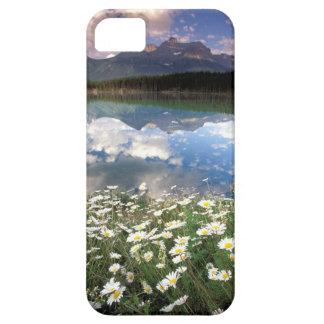 North America, Canada, Alberta, Banff National 2 iPhone 5 Cases