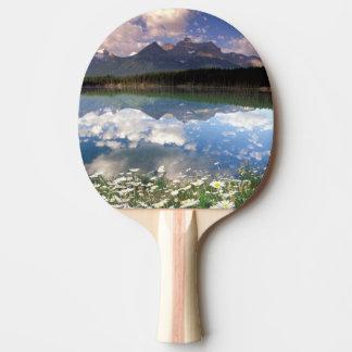 North America, Canada, Alberta, Banff National 2 Ping Pong Paddle