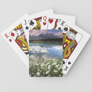 North America, Canada, Alberta, Banff National 2 Playing Cards