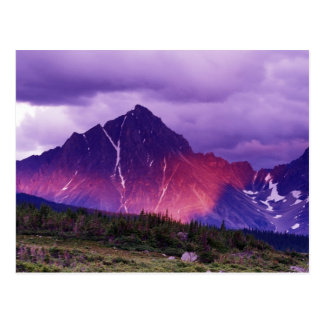 North America, Canada, Alberta, Canadian Postcard