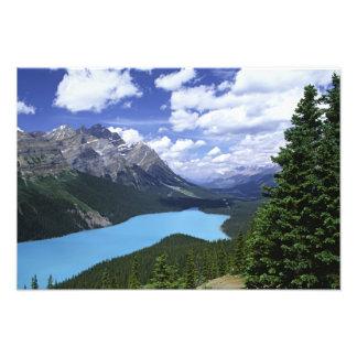 North America, Canada, Alberta, Jasper 6 Photo Print