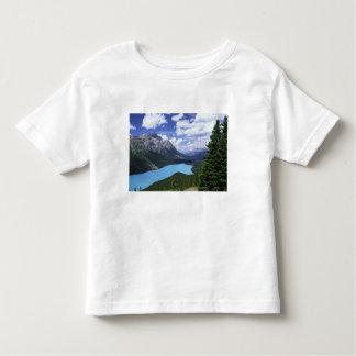 North America, Canada, Alberta, Jasper 6 Toddler T-Shirt