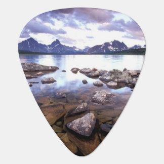 North America, Canada, Alberta, Jasper National Plectrum