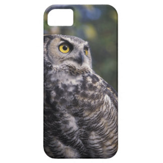 North America, Canada, British Columbia, 2 Barely There iPhone 5 Case