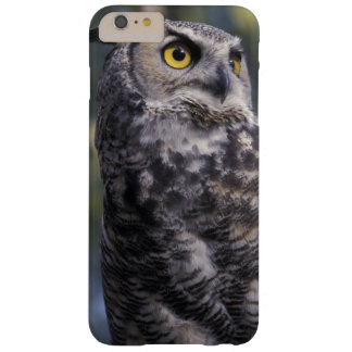 North America, Canada, British Columbia, 2 Barely There iPhone 6 Plus Case