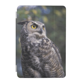 North America, Canada, British Columbia, 2 iPad Mini Cover