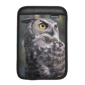 North America, Canada, British Columbia, 2 iPad Mini Sleeve