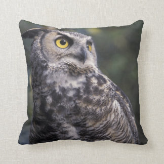 North America, Canada, British Columbia, 2 Throw Pillow