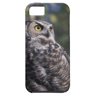 North America, Canada, British Columbia, 2 Tough iPhone 5 Case