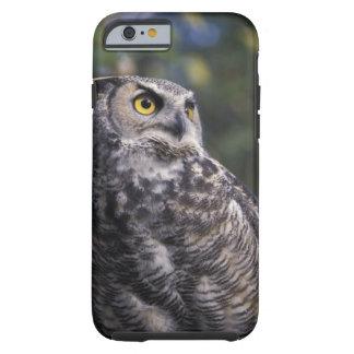 North America, Canada, British Columbia, 2 Tough iPhone 6 Case