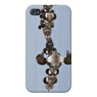 North America, Canada, British Columbia, Lac Case For The iPhone 4