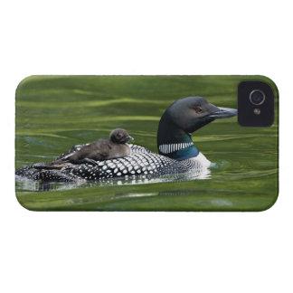 North America, Canada, British Columbia, Lac Le iPhone 4 Covers