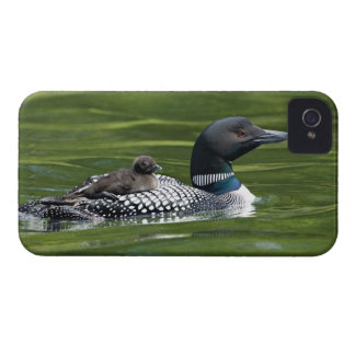North America, Canada, British Columbia, Lac Le iPhone 4 Cover