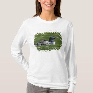 North America, Canada, British Columbia, Lac Le T-Shirt