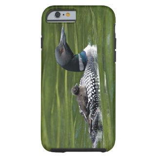 North America, Canada, British Columbia, Lac Le Tough iPhone 6 Case