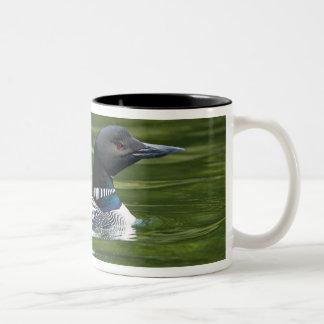 North America, Canada, British Columbia, Lac Le Two-Tone Coffee Mug