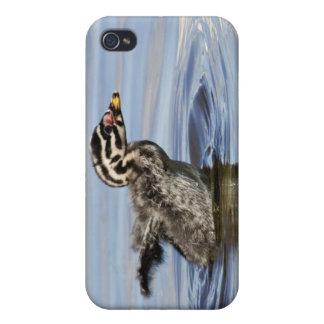 North America, Canada, British Columbia, Logan iPhone 4/4S Cases