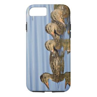 North America, Canada, British Columbia, Logan iPhone 8/7 Case