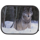 North America, Canada, Eastern Canada, Grey wolf Car Mat