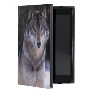 North America, Canada, Eastern Canada, Grey wolf Covers For iPad Mini