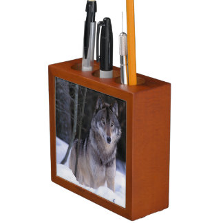 North America, Canada, Eastern Canada, Grey wolf Desk Organiser