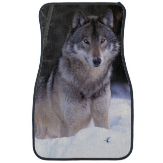 North America, Canada, Eastern Canada, Grey wolf Floor Mat