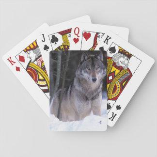 North America, Canada, Eastern Canada, Grey wolf Playing Cards
