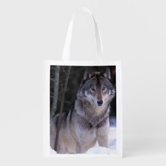 North America, Canada, Eastern Canada, Grey wolf Reusable Grocery Bag