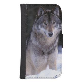 North America, Canada, Eastern Canada, Grey wolf Samsung S4 Wallet Case