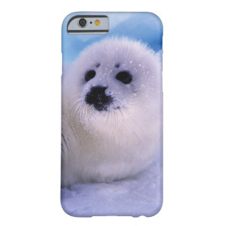 North America, Canada, Gulf of St. Lawrence. 2 Barely There iPhone 6 Case