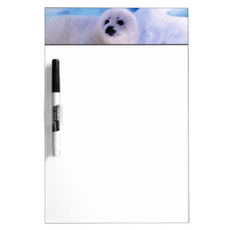 North America, Canada, Gulf of St. Lawrence. 2 Dry Erase Board