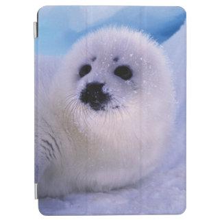 North America, Canada, Gulf of St. Lawrence. 2 iPad Air Cover