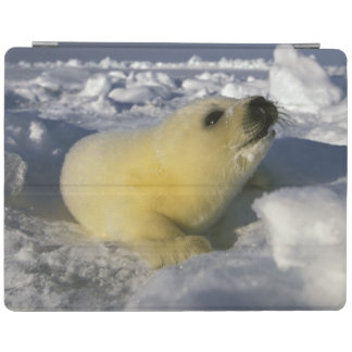 North America, Canada, Gulf of St. Lawrence. 3 iPad Cover