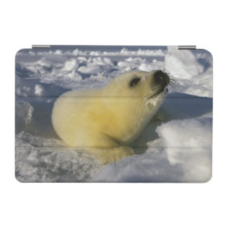 North America, Canada, Gulf of St. Lawrence. 3 iPad Mini Cover