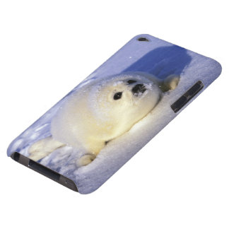 North America Canada Gulf of St Lawrence 4 Barely There iPod Cases