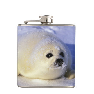 North America, Canada, Gulf of St. Lawrence. 4 Hip Flask
