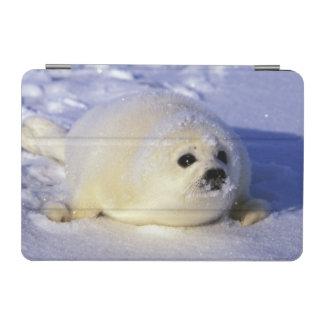 North America, Canada, Gulf of St. Lawrence. 4 iPad Mini Cover