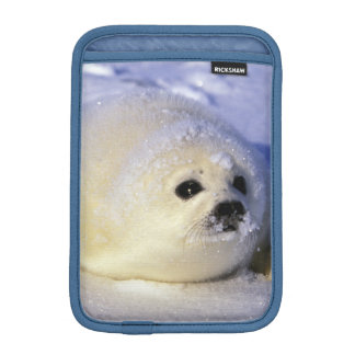 North America, Canada, Gulf of St. Lawrence. 4 iPad Mini Sleeve