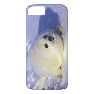 North America, Canada, Gulf of St. Lawrence. 4 iPhone 8/7 Case