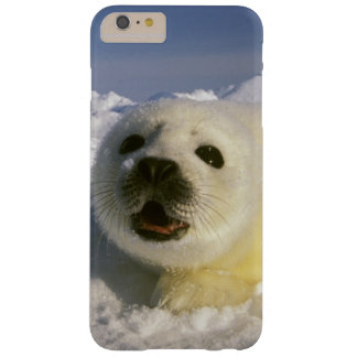 North America, Canada, Gulf of St. Lawrence. 5 Barely There iPhone 6 Plus Case