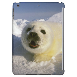 North America, Canada, Gulf of St. Lawrence. 5 iPad Air Cover