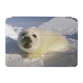 North America, Canada, Gulf of St. Lawrence. 5 iPad Mini Cover